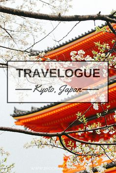 A guide in Kyoto and