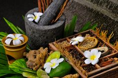 Ayurveda, White Magic Spells, Powerful Love Spells, Lesbian Love, Mortar And Pestle, Spelling, Celebrity Psychic, Gay, Recipes