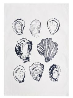 Oysters Tea Towel: this is kind of the illustration style i need to create for the anchor I am using on a set of invites Alphonse Mucha, Shell Drawing, Gcse Art, You Draw, Natural Forms, Line Drawing, Art Sketches, Art Inspo, Printmaking