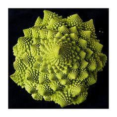Fraktales Gemüse by dl6hbl, via Flickr