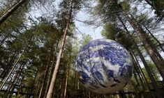 Closer To Nature, Ecology, Action, Culture, Group Action, Environmental Science