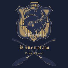 Ravenclaw Team Chaser t-shirt