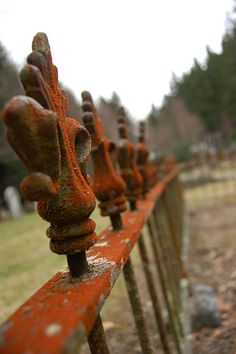 rust ~ Graveyard fence