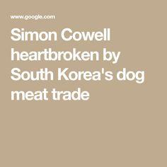 Simon Cowell heartbroken by South Korea's dog meat trade