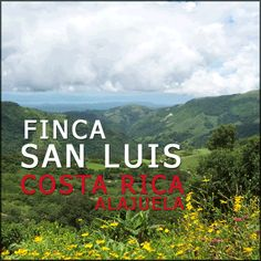 Finca San Luis Costa Rica    On sale for a limited time!  See our blog for details. $13.31