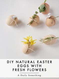 DIY Easter Eggs proj