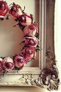 Die 26 besten Bilder von Getrocknete Rosen in 2019 | Rosen ...