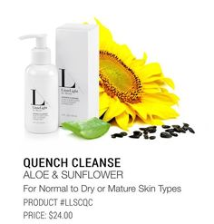 Quench Cleanse. This is a great cleanser for dry or aging skin. Its ingredients are focused on hydrating and balancing the skin, as well as calming some common issues that arise with aging, sun damage, and troubled skin. MUA makeup artist skincare professional cosmetics direct sales new ground floor LimeLight by Alcone Lori Larkin paraben free.