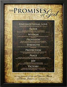 The Promises Of God 13x17 Framed Art