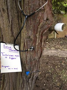 @AlphieMustang tree technician Photo Competition, Shit Happens