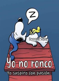 Meu Amigo Charlie Brown, Charlie Brown And Snoopy, Sleepy Quotes, Good Night Gif, Snoopy Love, Good Night Sweet Dreams, Happy Birthday Messages, Real Life Quotes, Prayer Quotes