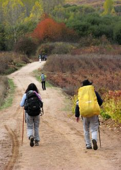 photos of pilgrims on the Camino..my dream trip.