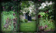 Voorjaar inde tuin, www.itfoarhus.nl