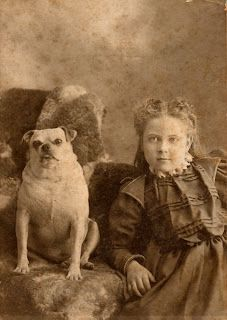 (I've updated this post with more photos of pugs at the end)    Pug about 1885   The history of Pugs is a long one, dating back almost 300...