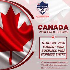 immigration consultants in Chandigarh - Hallmark immigration consultants are the best immigration consultants in Chandigarh in sector Call Visa Canada, Business Visa, Social Media Design, Banner, Student, Education, Creative, Visa For Canada, Banner Stands