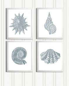 Beach Cottage Grey Seashells Nautical more colors available set of 4 each 11x14 on Etsy, $56.00