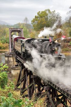 Ride on a scenic train excursion on the Great Smoky Mountains Railroad in western North Carolina near Asheville and Bryson City. Bryson City North Carolina, North Carolina Mountains, Western North Carolina, South Carolina, Nc Mountains, Great Smoky Mountains, Train Travel, Travel Usa, Fontana Lake