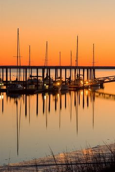 st simons island georgia | St. Simons Island | Golden Isles, Georgia | Places