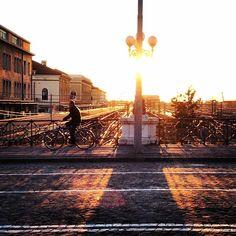 Shine a light, Bologna - Instagram by nicola_violetto