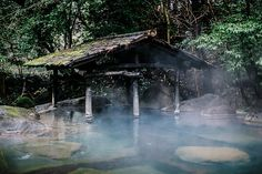 wander | japan : kur