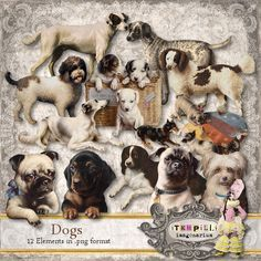 Deviant Scrap : itKuPiLLi Imagenarium Dogs