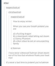I don't pretend to be Batman. I am Batman