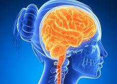 Якщо у вас є якісь погані звички, ви ведете не зовсім правильний спосіб життя, а вашому мозку не вистачає енергії та поживних речовин, то вам сюди!