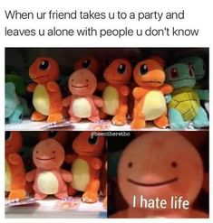 Vedios Funny memes Of The Day - Pokemon Crazy Funny Memes, Really Funny Memes, Stupid Funny Memes, Wtf Funny, Funny Relatable Memes, Funny Cute, Funny Posts, Hilarious, Funny Stuff