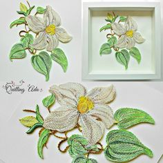 """Quilling """"Clematis Candida"""" flower"""