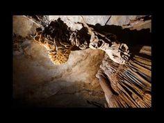Les grottes à Quang Binh