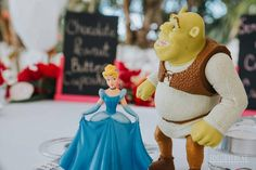 Nicole played Cinderella at Disney and Clint football at Penn State.  Only fitting to have cake toppers to match their Disney personalities!