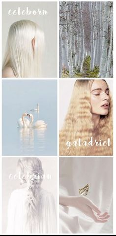 middle-earth families series: celeborn, galadriel & celebrian