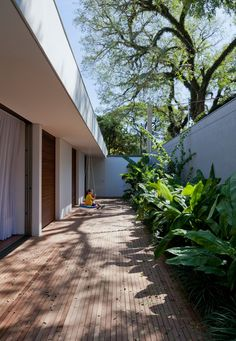 AMZ Arquitetos has built a home in the city that expands onto a verdant lawn, while a series of planted spaces open to the sky continue the greenery through the property.