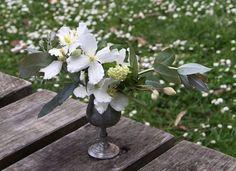 Honey of a Thousand Flowers - Spring Portfolio