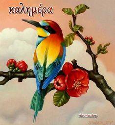 Όμορφη και Χαρούμενη Μέρα για όλους με Όμορφες Καλημέρες - eikones top Oil Pastel Drawings, Bird Drawings, Colorful Drawings, Animal Drawings, Bird Painting Acrylic, Watercolor Art, Exotic Birds, Colorful Birds, Pretty Birds