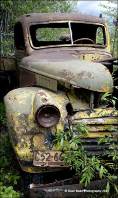 In the Weeds photo - Dave Blake Photo Post Mortem, Vintage Cars, Antique Cars, Rust Never Sleeps, Rust Paint, Abandoned Houses, Rat Rods, Old Trucks, Old Cars