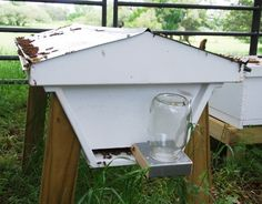 Feeder at the entrance of the hive