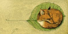 Foxes Den @Bridget McCornell Obikoya+bobi