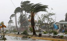 Strong Wind Blowing Trees Midwest - Bing Images