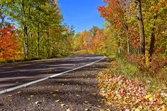 These roads will take you through some of the most gorgeous fall leaves in Minnesota.