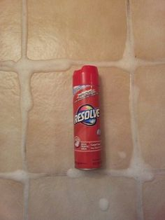 Turns out that one of the best ways to clean grout is with...carpet cleaner. What?!?