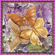 Butterflys Challenge