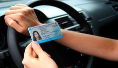 18 Ideas De Licencia De Conducir Prorroga Licencia De Conducir Registro De Conducir Examen De Conducir