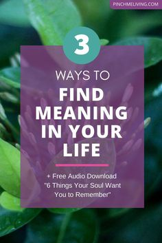 Why do we all CRAVE meaning in our lives? And how do we find meaning? In this video we cover the 2 big reasons we ALL crave meaning - this is the stuff that's so deep to our human nature, it's like it written in our DNA! And 3 ways you can instantly add meaning and depth to your life right now. Plus a free audio download of 166 empowering spiritual truths to support your life journey.