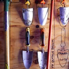 tool shed: organized garden tools