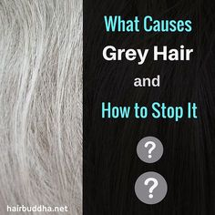 grey hair remedies Your hair can become grey because of several reasons. Here are the top 15 natural home remedies for grey hair treatment with images which are definitely help to you. Grey Hair Early, Grey Curly Hair, Thick Hair, Grey Hair Treatment, Covering Gray Hair, Grey Hair Facts, Grey Hair Modern, What Causes Gray Hair, Grey Hair Reversal