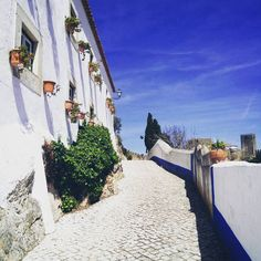 City life!���� #setubal #portugal #erasmus #life #travel #journey #aroundtheworld #discovery #beautiful #place #nice #view #city #centre #obidos #streets #happiness #freedom #enjoy #good #blue #sky #sunny #day #nature #loveit #picoftheday #pic #photography #nofilterneeded http://tipsrazzi.com/ipost/1509405170956729446/?code=BTyfAF9A3xm