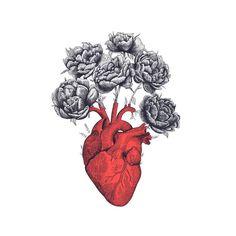 Măcar a inflorit cv în sufletul meu..