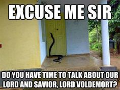 Harry Potter, Memes: Ecuse me sir Do you have time to talk about our lord and savior, lord Voldemort? Lord Voldemort, Ravenclaw, Slytherin House, Harry Potter Jokes, Harry Potter Fandom, Harry Potter Snake, Harry Potter Imagines, Harry Potter Couples, Harry Potter Stories