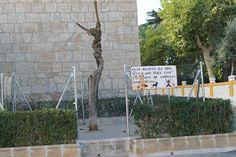 Efectos que produce un pis de Don Patrocinio Herrero en los arboles, de todos es conocido que orina napalm